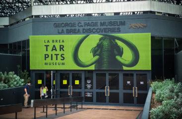 Tar Pits – La Brea Museum – Los Angeles ¡Ese gran desconocido!