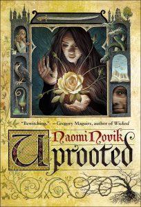 cuento oscuro, naomi novik, reseña, libro, book, review, capitulo gratis, paginas gratis,